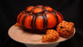turtle resize